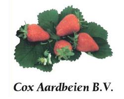 Cox Aardbeien B.V.