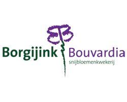 Borgijink Bouvardia